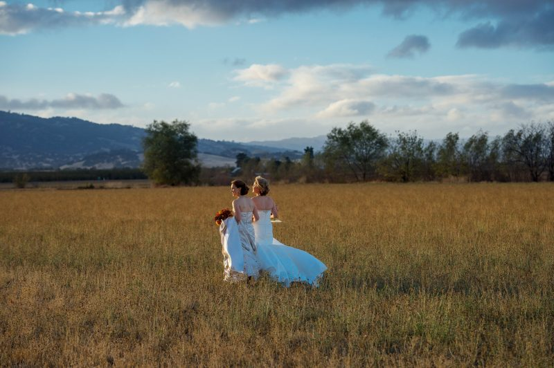 Arm in arm two ladies celebrate their marriage as they walk across a field at sunset at Park Winters in Winters, CA